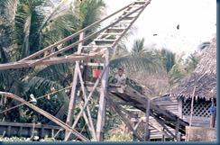 carousel 186